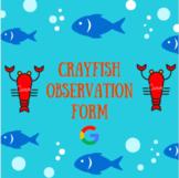 Crayfish Observation Form