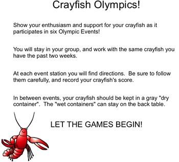 Crayfish Olympics