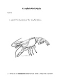 Crayfish Unit Assessment