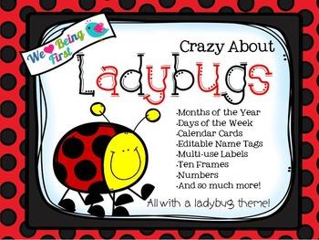 Ladybugs Classroom Decor - EDITABLE