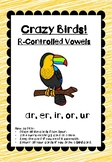 Crazy Birds! R-Controlled Reading & Phonics Game (ar, er,