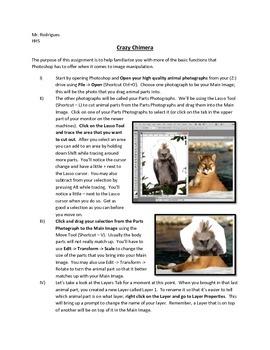 Crazy Chimera - Photoshop (Computer Art Assignment 3)