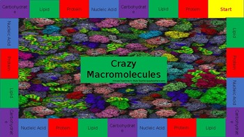 Crazy Macromolecule Game Board