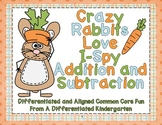 Crazy Rabbits Love I-Spy Addition and Subtraction-Differentiated and Aligned