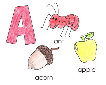 Create, Explore & Write the Alphabet