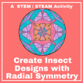 Create Insect Designs with Radial Symmetry - STEM / STEAM - Art Activity