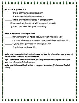 Create: Vascular and Non-Vascular Plant Brochure