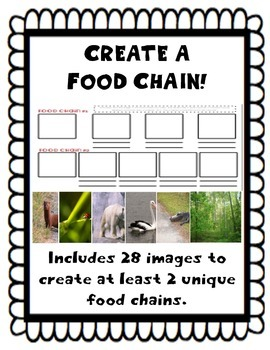 Create Your Own Food Chain
