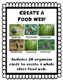Create Your Own Food Web