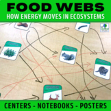 Food Web Activities: Energy Flow and Changes to the Ecosystem