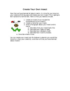 Create Your Own Insect Project