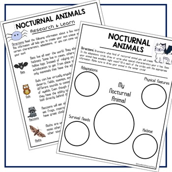 Nocturnal Animals - Creative Writing Freebie