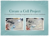 Create a Cell Project