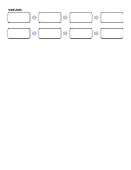 Create a Food Chain Worksheet