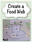 Create a Food Web Activity