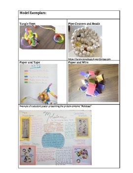 Create-a-Protein Project: Modeling Protein Structure and Function