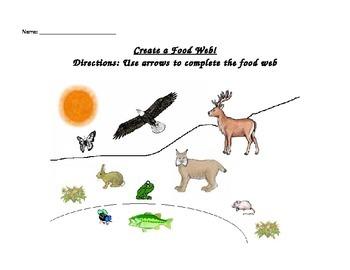 Create a food web!