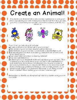 Create an Animal Activity