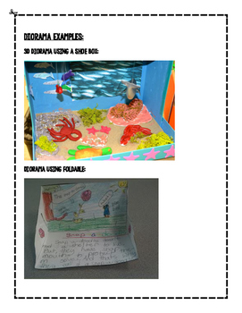 Create an Animal Diorama with Writing Prompt and Rubric - Project Based Learning
