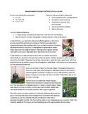 Create an Outdoor Garden