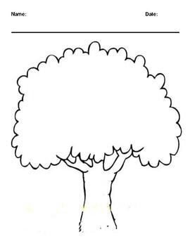 Family Tree Worksheet | Teachers Pay Teachers