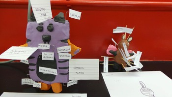 Create your own Creature with Anatomical terms project