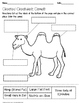 Created Creatures: Camels