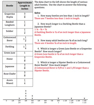 Creating Line Plots & Interpreting Data on a Line Plot ~ 4.MD.B.4