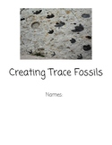 Creating Trace Fossils