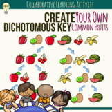 Creating a Dichotomous Key for Common Fruits Group Activit