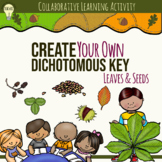 Creating a Dichotomous Key for Leaves and Seeds Group Activity Science Lab