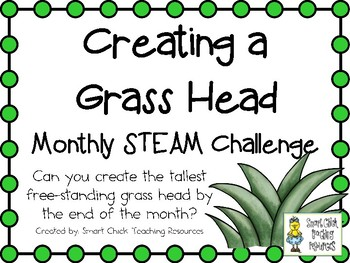 Creating a Grass Head ~ Monthly STEM School-wide Challenge - Spring