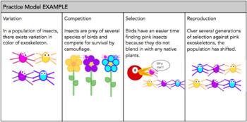 Creating a Natural Selection Model