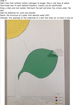 Creating a Visual Model of Photosynthesis (NGSS 5th)