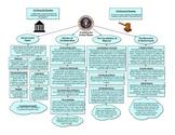 U.S. Government Graphic Organizer