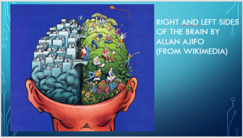 Creative Brain Representation