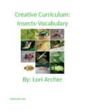 Creative Curriculam Insects-Vocabulary
