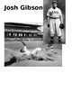Creative Curriculum Ball Study real pic of ppl with balls/ help with Josh Gibson