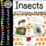 Creative Curriculum Insects Study-All pictures needed