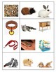 Creative Curriculum/Tools of the Mind Pets and Vet Bingo