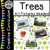 Creative Curriculum Trees Study-All pictures needed