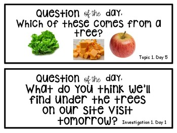 """Creative Curriculum """"question of the day"""" TREES"""
