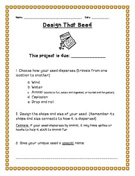 Creative Seed Dispersal Project