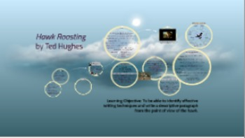 Creative Writing Lesson Linking to the Poem Hawk Roosting by Ted Hughes