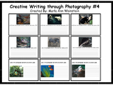 Creative Writing through Photography #4