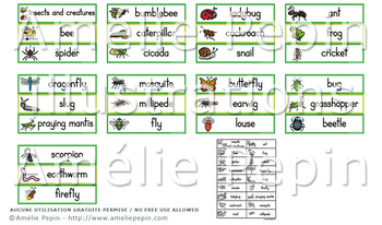 Creatures and Insects Illustrated Word Wall (27)