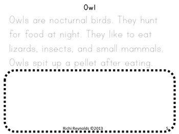 Creatures of the Night: Nocturnal Animals Read, Write, Color and Draw