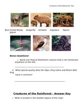 Creatures of the Tropical Rainforest Test and Answer Key w/ Pictures Grades 2-5