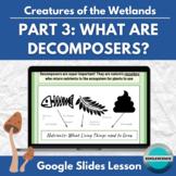 Creatures of the Wetlands Prt 3: Meet the Decomposers! Google Slides interactive