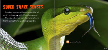 Creepy But Cool Snakes Science flip e-book